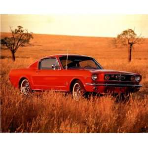 Professionally Framed 1965 Red Ford Mustang Fastback Print