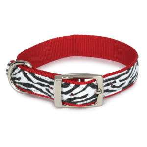 Zack & Zoey Animal Print Dog Collar Zebra Nylon