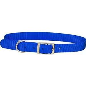1 Single Ply Nylon Dog Collar in Blue, Large