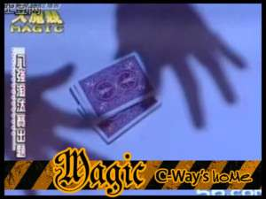 A008 1 Close Up Magic Trick Shadow Find The Card +DVD