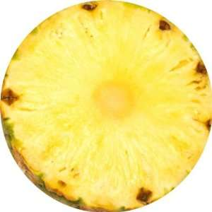 Pineapple Slice Art   Fridge Magnet   Fibreglass reinforced plastic