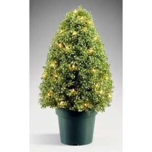 National Tree Company LBX 300 42 42 Inch Boxwood Tree with 100 Clear