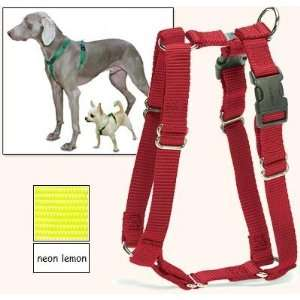 Fit Dog Harness, 5 Way Adjustability for a Perfect Fit (Neon Lemon, X