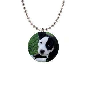 American Pit Bull Puppy Dog Button Necklace B0013