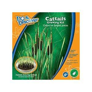 Edu Science Cat Tail Growing Kit Toys & Games