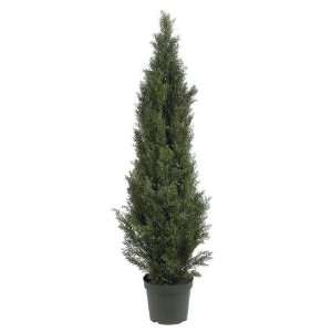 Exclusive By Nearly Natural 5 Ft Mini Cedar Pine Tree (Indoor/Outdoor