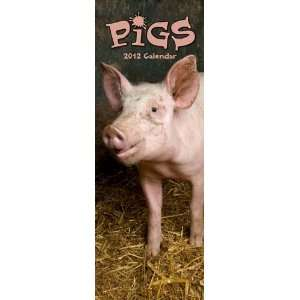 Animal Calendars Pigs   12 Month Slim   16.4x5.9 inches